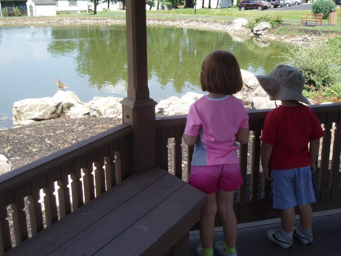 Watching the ducks at the park near our house.