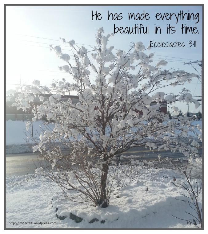 winter beautiful bible